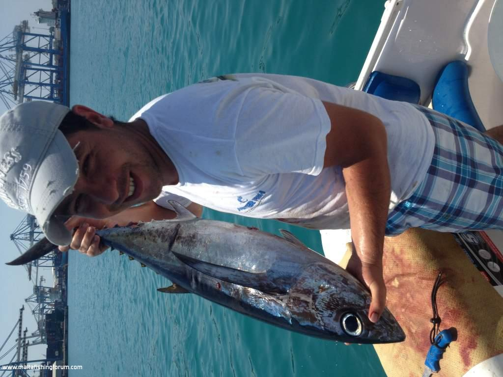 Malta fishing forum under water albacore fishing video for Sa fishing 5 for 15